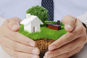 Приватизация земли в частном секторе
